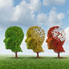 Fighting dementia through healthy eating, when is it time to consider a Memory Care facility